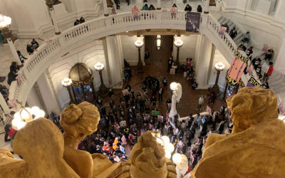 500 Advocates Flood Capitol to Demand Parole Reform for Lifers